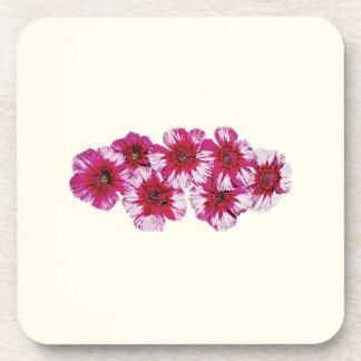 Magenta Dianthus Coasters