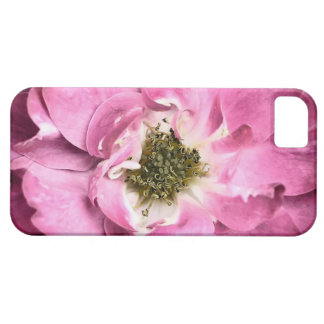 Magenta Flower ~ Rose Petals & Stamens iPhone SE/5/5s Case