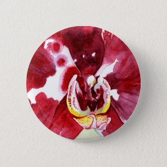 Magenta Phalaenopsis Close-up Button