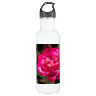 Magenta Pink and White Rose Stainless Steel Water Bottle
