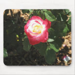 Magenta Pink Rose Mousepad