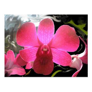 Magenta purple orchid digital photo postcard