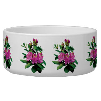Magenta Rhododendrons With Buds Bowl