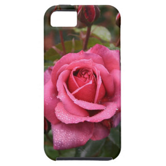 Magenta Rose For You iPhone 5 Covers