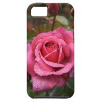 Magenta Rose For You!