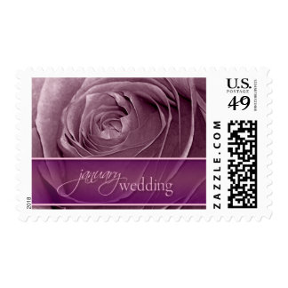 Magenta Rose January Wedding-Medium Postage