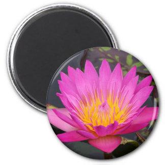 Magenta Waterlily 2 Inch Round Magnet