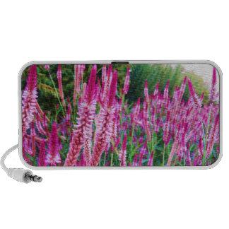 Magenta Wildflowers Speaker