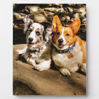Maggie and Charlie s Vacation Photo Plaques