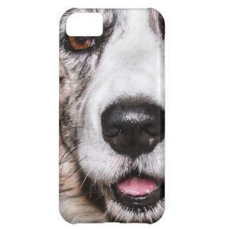 Maggie iPhone 5C Covers