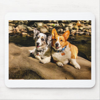Maggie & Charlie Mousepads
