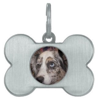 Maggie Girl Pet ID Tags