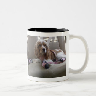 Maggie in shoes Two-Tone coffee mug