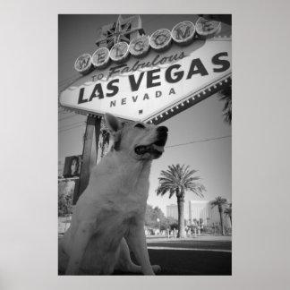 Maggie - Las Vegas Sign Poster