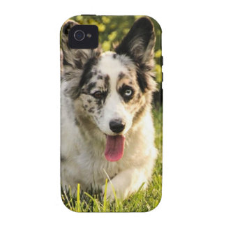 Maggie Mae iPhone 4/4S Cover
