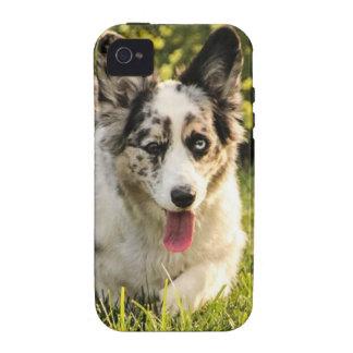 Maggie Mae Case-Mate iPhone 4 Cases