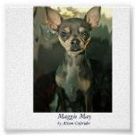 Maggie May, by Alison Caltrider Posters