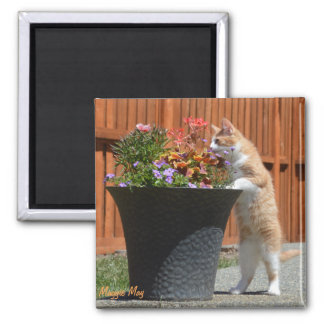 Maggie May & Flowers 2 Inch Square Magnet