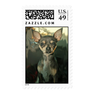 Maggie May Postage Stamps