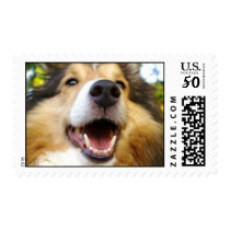 maggie postage