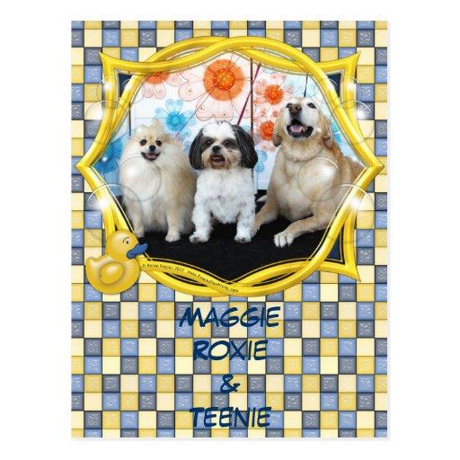 Maggie Roxie and Teenie Post Card