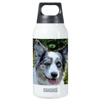 Maggie Thermos Bottle