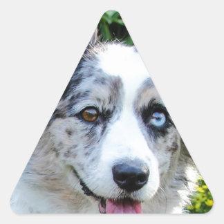 Maggie Triangle Sticker