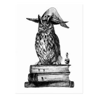 Magia de Halloween del búho de la brujería Tarjeta Postal