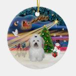 Magia de Navidad - algodón de Tulear (arco) Adornos