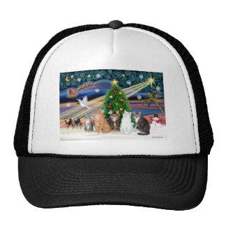 Magia de Navidad - cinco gatos (AmSH) Gorros Bordados