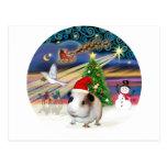 Magia de Navidad - conejillo de Indias 1 (gorra) Postal