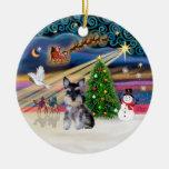 Magia de Navidad - perrito del Schnauzer (z) Ornamento De Navidad