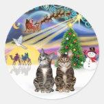 Magia de Navidad (r) - dos gatos de Tabby de Brown Pegatina Redonda