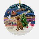 Magia de Navidad - Vizsla #2 Ornamento De Navidad