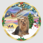 Magia de Navidad (w) - Yorkshire Terrier Etiqueta Redonda