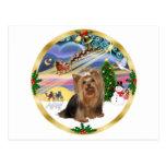 Magia de Navidad (w) - Yorkshire Terrier Tarjetas Postales