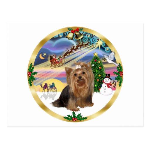 Magia de Navidad (w) - Yorkshire Terrier Tarjeta Postal