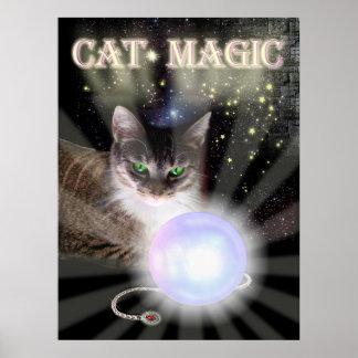 Magia del gato poster