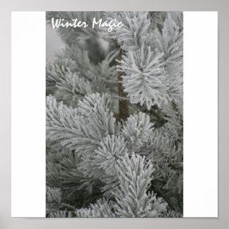 Magia del invierno posters