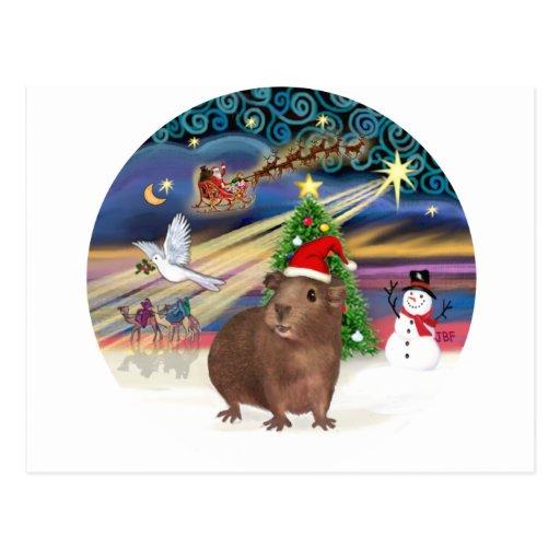 Magia del navidad - conejillo de Indias #3 (gorra) Postal