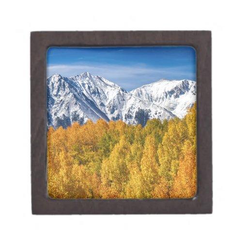 Magia del otoño de la montaña rocosa de Colorado Cajas De Recuerdo De Calidad