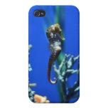 Magia del Seahorse iPhone 4/4S Carcasa