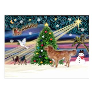 Magia-Nueva escocia-soporte de Navidad Postales