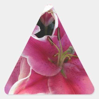 Magia rosada de la flor pegatina triangular