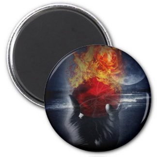 Magic Ball Large Round Magnet