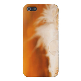 Magic feather case for iPhone 5