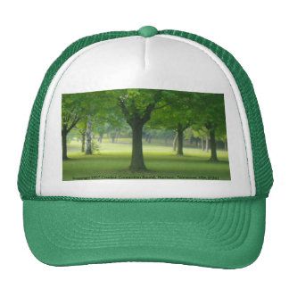 Magic Forest Hat from Shellis