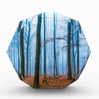 Magic forest in fog in blue and orange acrylic award