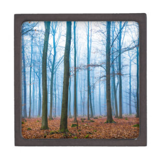 Magic forest in fog in blue and orange jewelry box