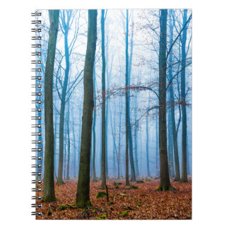 Magic forest in fog in blue and orange notebook